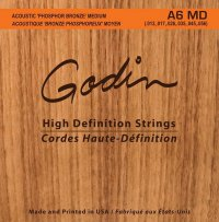 GODIN Strings Acoustic Guitar MD
